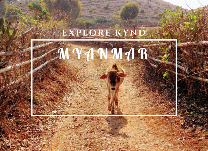 explore kynd myanmar